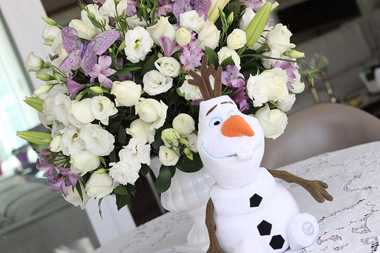 Olaf arranjo